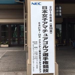 IMG_0297.JPG